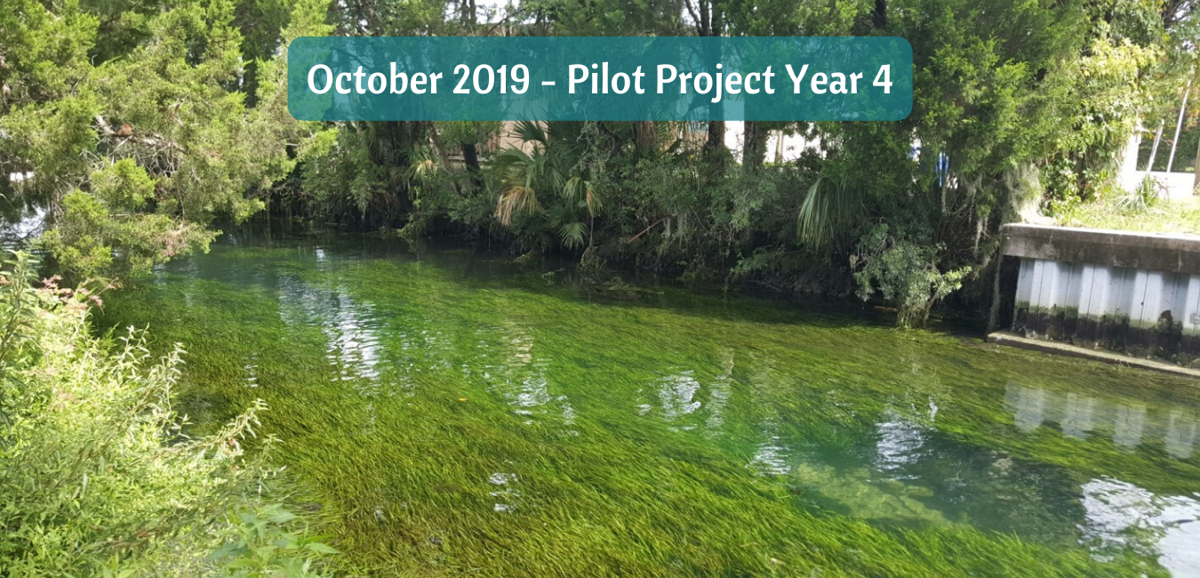 October 2019 - Pilot Project year 4